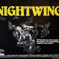 Arthur Hiller's Nightwing
