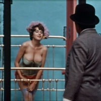 THE RUSS MEYER FILES: WILD GALS OF THE NAKED WEST (1962)