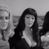 THE RUSS MEYER FILES: FASTER, PUSSYCAT! KILL! KILL! (1965)