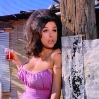 THE RUSS MEYER FILES: COMMON LAW CABIN (1967)